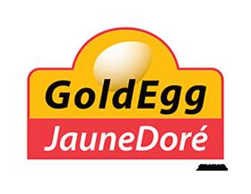 Gold Egg